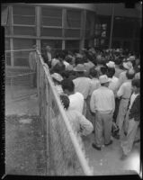Undocumented Mexican workers await deportation, Los Angeles, 1954