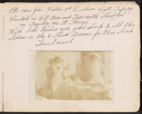 E.F. Raynes Plante Autograph Albums (1914-1918)