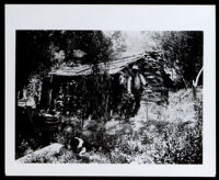 Nate Harrison at his homestead, Palomar, Mount (Calif.), circa 1910-1915