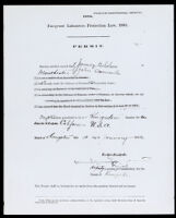 """""""Emigrant Labourers Protection Law, 1893"""" exit permit of John A. Somerville, 1902"""