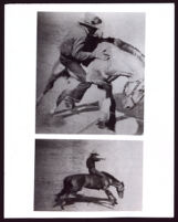 Bronco riding for western movies, 1940s-1950s