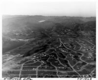 Aerial view of Westwood Hills including UCLA, 1929