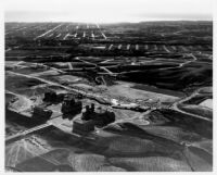Aerial view of UCLA looking west to Santa Monica, 1930
