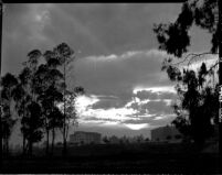 Campus at sunset, 1946