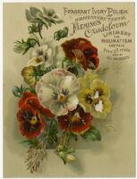 Fleming's Crudoform Liniment [inscribed]