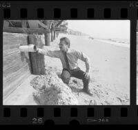 Robert Saviskas, health officer, inspecting pipe on Malibu beach home, 1986