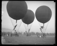 Three balloons either landing or ready to take-off at Arcadia Balloon School, Calif., circa 1920