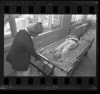 Nurses Irene Hanus and Mamie Stephens demonstrating mud hospital bed in Los Angeles, Calif., 1971