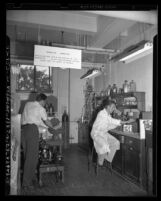 Clifford S. Garner and Sydney Furman working in radioactivity laboratory at UCLA, Calif., circa 1948
