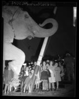 Group of deaf girls getting up close to elephant at Clyde Beatty Circus in Los Angeles, Calif., 1949