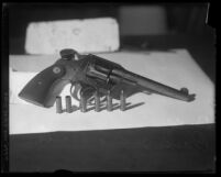 David H. Clark's gun, bullets and shells
