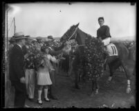 Race horse Golden Prince being adorned with flowers after a victory in Los Angeles, Calif., circa 1929