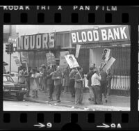 Blood Donors Union members picketing a Skid Row blood bank in Los Angeles, Calif., 1973