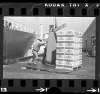 Longshoreman loading cartons of California lemons for shipment to the Soviet Union, 1973