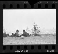 Beach goers with discarded Christmas tree on shoreline with sailboats in background at Marina del Rey, Calif., 1973