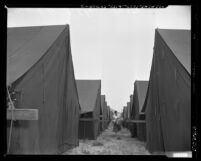 Woman walking between rows of tents at Seventh Day Adventist meeting camp in Lynwood, Calif., 1950
