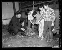 Four boys showing police officer J. H. Scott human skeleton they found in Los Angeles, Calif., circa 1954