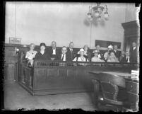 Group portrait of Dr. Thomas Young's murder trial jury members sitting in jury box
