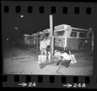 Five RTD bus drivers waiting with strike picket signs at bus yard in Los Angeles, Calif., 1974