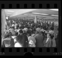 People in the California Department of Employment Development office in Los Angeles, Calif., 1974