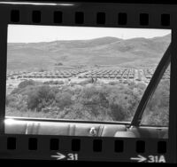 Tent city at Vietnamese refugee camp at Camp Pendleton, Calif., 1975