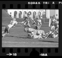 UCLA quarterback John Sciarra in mid-field play during UCLA vs Cal game at the Los Angeles Coliseum, 1975