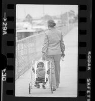 Toddler Chekesha Van Putten riding in cart pulled by her grandmother Romaine Lyons in Marina del Rey, Calif., 1975