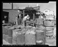Two workers and barrels of scrap metal at Los Angeles, Calif. city dump, circa 1942
