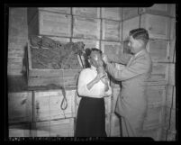 Los Angeles County purchasing agent, J. W. Hughes in 1942, fitting gas mask on Marcia L. Jones.