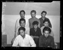 Group portrait of eight Mexican American males taken in for questioning in the 1942 Sleepy Lagoon murder investigation, Los Angeles, Calif.