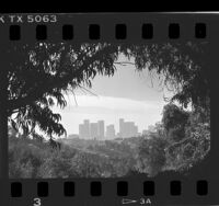 Downtown skyline viewed from Elysian Park in Los Angeles, 1987