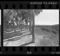 Hiking trail at Will Rogers State Historic Park in Pacific Palisades, Calif., 1987