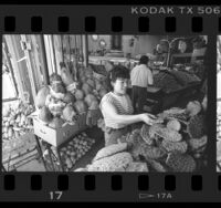 Maria Girelda selecting cactus at Sal's Market on Brooklyn Ave. in Boyle Heights, Calif., 1987
