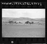 Headquarters camp of Irvine Ranch in Bommer Canyon, Calif., 1959