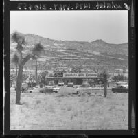Western Hills Estates development office surrounded by new homes in Yucca Valley, Calif., 1961