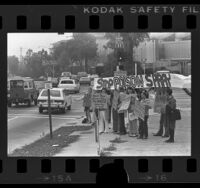 Demonstrators with placards protesting chemical dioxin spraying of Angeles National Forest, Pasadena, Calif., 1976