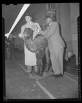 Jack Benny and Eddie Anderson, (aka Rochester) disembarking train with camel in Los Angeles, Calif.