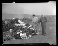 "Los Angeles County District Attorney, Fred N. Howser and unidentified man preparing to burn a pile of films deemed ""lewd"" in 1945"