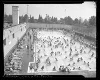 Swimmers at Los Angeles' La Cienega Municipal Pool, circa 1945