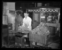 Butcher Alex Wright working with Butcher Boy meat cutter during 1946 meat shortage