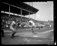 Jim Baxes batting during Hollywood Stars vs San Francisco Seals game, 1950