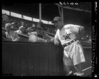 Baseball Managers Fred Haney and Branch Rickey at Hollywood Stars baseball game, 1950