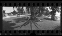 Wide angle view of Palisades Park in Santa Monica, Calif., 1976