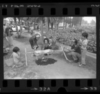 Filipino family roasting pig over hot coals during the Lotus Festival at Echo Park in Los Angeles, Calif., 1976