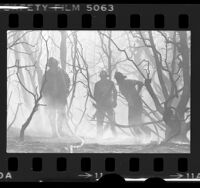 Firemen amongst burned-out trees and shrubs caused by wildfire near Palmdale, Calif., 1976