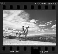 Linda Von Henneken on horseback, looking over valley from Mulholland Drive in Los Angeles, Calif., 1976