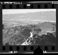 View of Burbank and Glendale from hilltop in Griffith Park, Calif., 1976