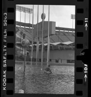 Worker clearing drain of flooded Dodger Stadium, Calif., 1977