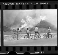 Children on bicycles watching wildfire burn in La Tuna Canyon, Calif., 1977