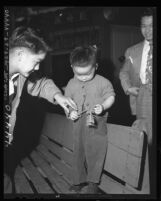 Boys armed with firecrackers during Chinese New Year's in Los Angeles, Calif., 1947